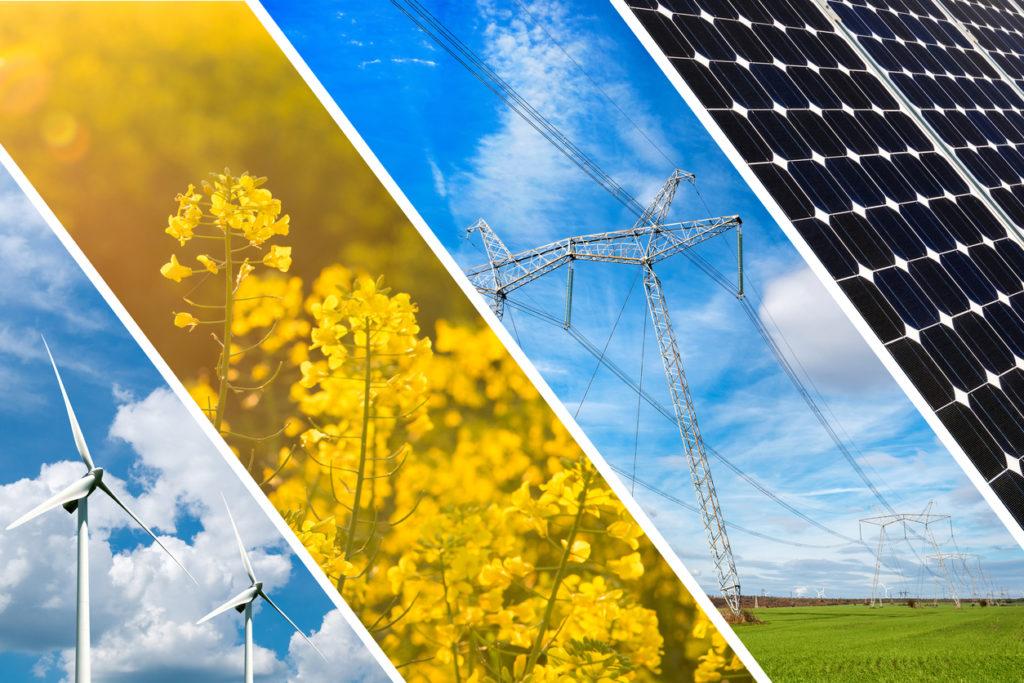 Energías 100% renovables. Definición y tipos
